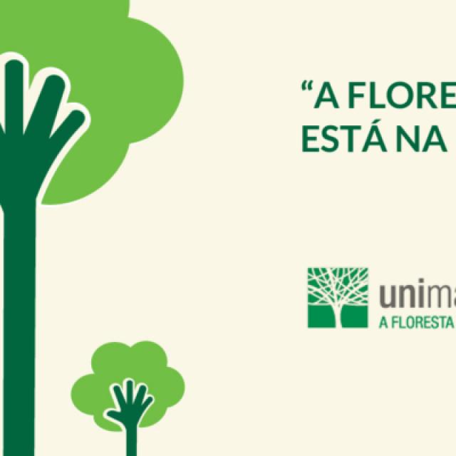 """""""A Floresta está na moda"""""""